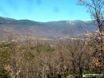 Cascadas Purgatorio;Bosque de Finlandia; viajes en julio parques naturales en asturias paseos por la
